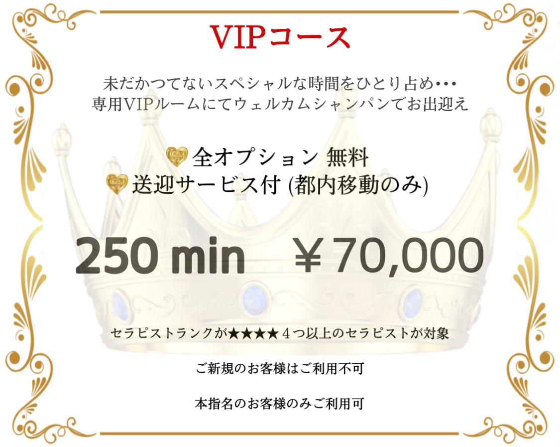 VIPコース料金一覧